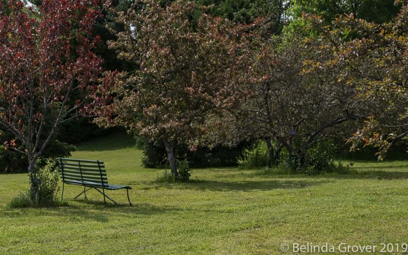 Park Bench-2