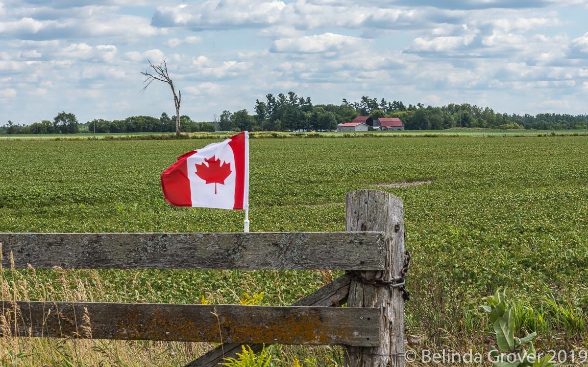 Fence & flag