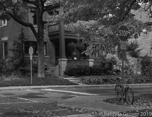 Street Scenes-2