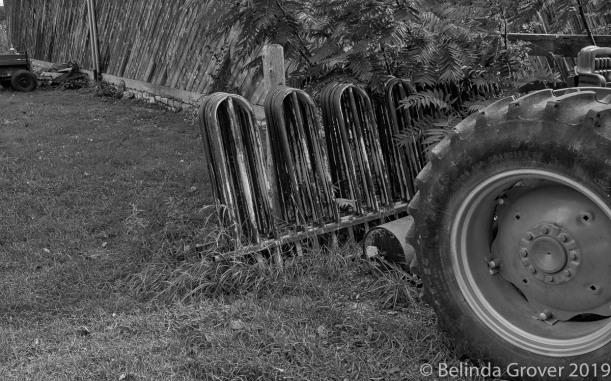 Farm Scene-2